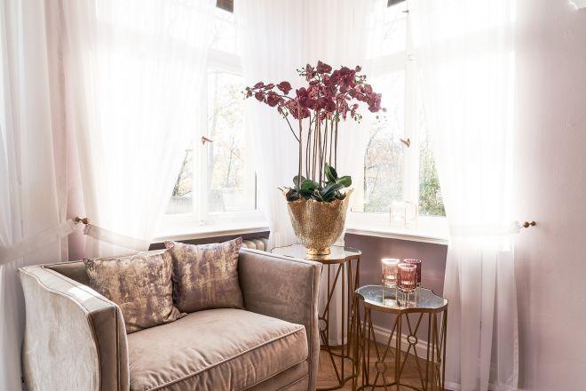 Übernachtungen, Sofa und Dekoration